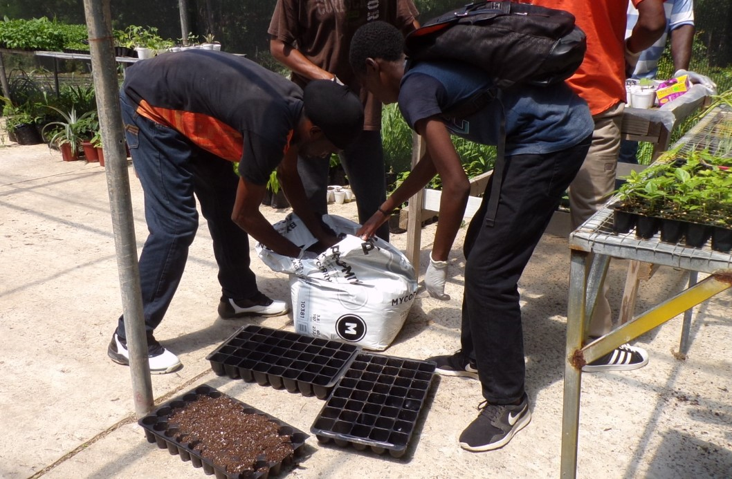 Press Release: 14 Persons Complete Sandals Sponsored Climate-Smart Agriculture Course